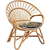 Aashi Enterprise Designer Cane Ira Chairs for Living Room with Cushion, Standard Size(Brown)