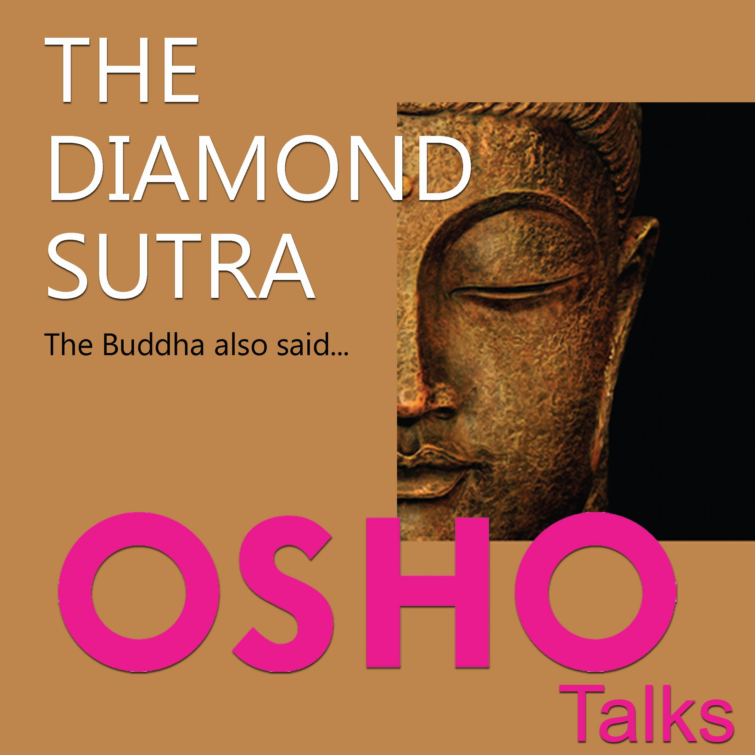 The Diamond Sutra: The Buddha Also Said...