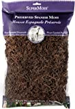 Super Moss 26972 Spanish Moss Preserved, Coffee, 8oz (200 cubic inch)