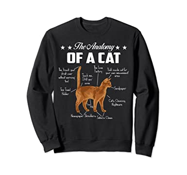 Amazon Kitten Gift The Anatomy Of A Cat Funny Cat Lover