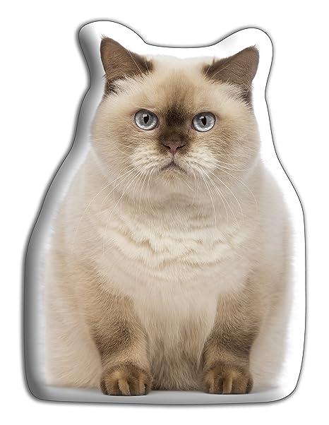 Pet Cushions Cojín grande para enamorados de gatos británicos – Cojines de lujo con forma atractiva