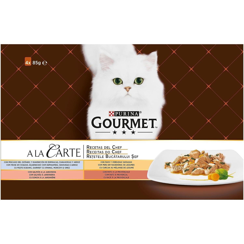 Purina Gourmet a la Carte Recetas del Chef en Salsa Surtido Pescado del Oceano 4 x [12 x 85 g]: Amazon.es: Productos para mascotas