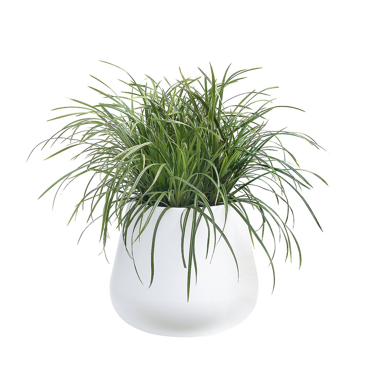 Elho Pure Cone Vaso, Bianco, 55 x 55 x 46.5 cm