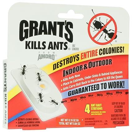 Amazon.com: Pack de 4 control de las hormigas anzuelo ...
