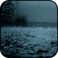 Relaxing Sounds of Rain: Best for Relaxation, Sleep, Meditation, Yoga, and Studying