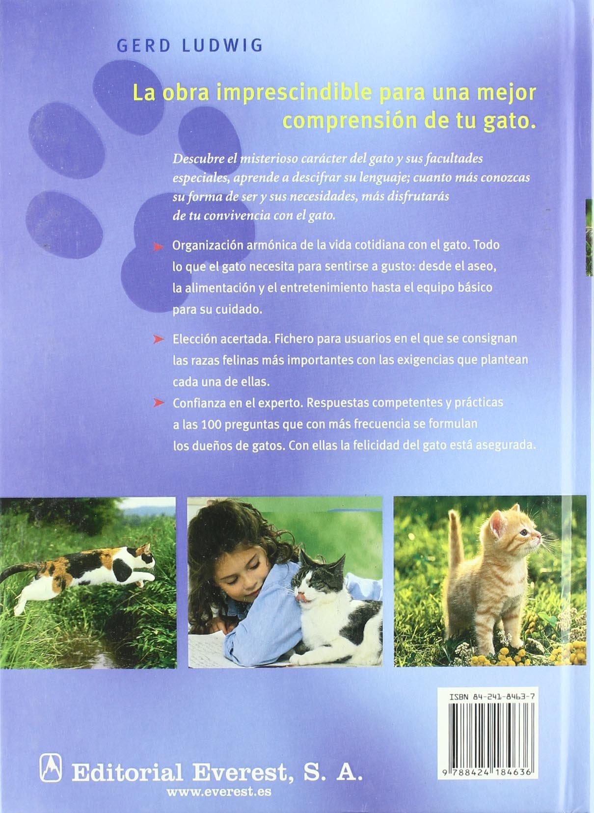 Gatos: Guía práctica para una convivencia feliz Cuida tu mascota: Amazon.es: Ludwig Gerd, Holzner Renate, Berasaín Villanueva Ambrosio: Libros