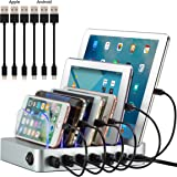 Simicore Smart Charging Station Dock & Organizer for Smartphones, Tablets & Other Gadgets - 6-Port Multiple USB Charger Station & Phone Docking Station with Charging Status Indicator (Silver)