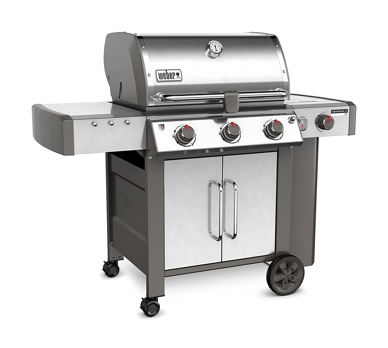 b5d65f41aae Amazon.com: Weber 61004001, Stainless Steel: Garden & Outdoor
