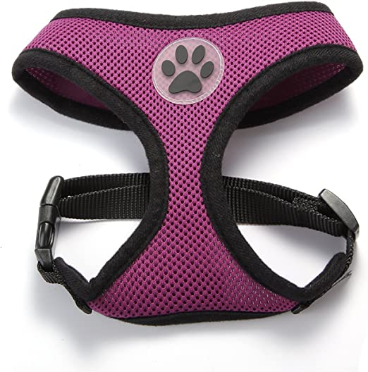 arn/és de perro ajustable y correa Kit de arn/és para perro Aolvo con c/ómodo chaleco acolchado para mascotas peque/ñas y cachorros malla peque/ña transpirable