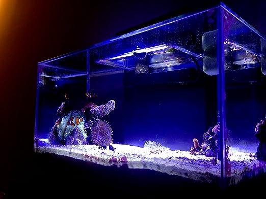 Amazon.com  18 Watt Ultrabrite reef led system for fluval edge  Aquarium Lights  Pet Supplies & Amazon.com : 18 Watt Ultrabrite reef led system for fluval edge ... azcodes.com