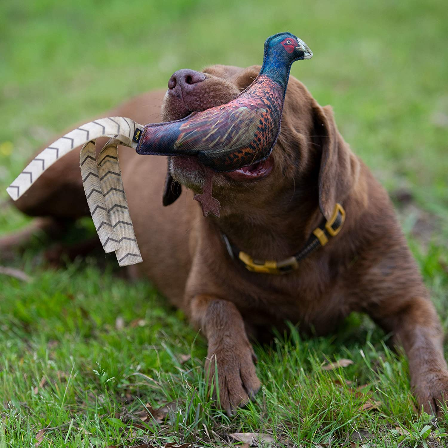 Browning Pheasant Chew Toy