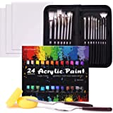 Acrylic Paint Set, 48 Piece Professional Painting Set, Includes 24 Acrylic Paints, 16 Painting Brushes with Case,Paint…