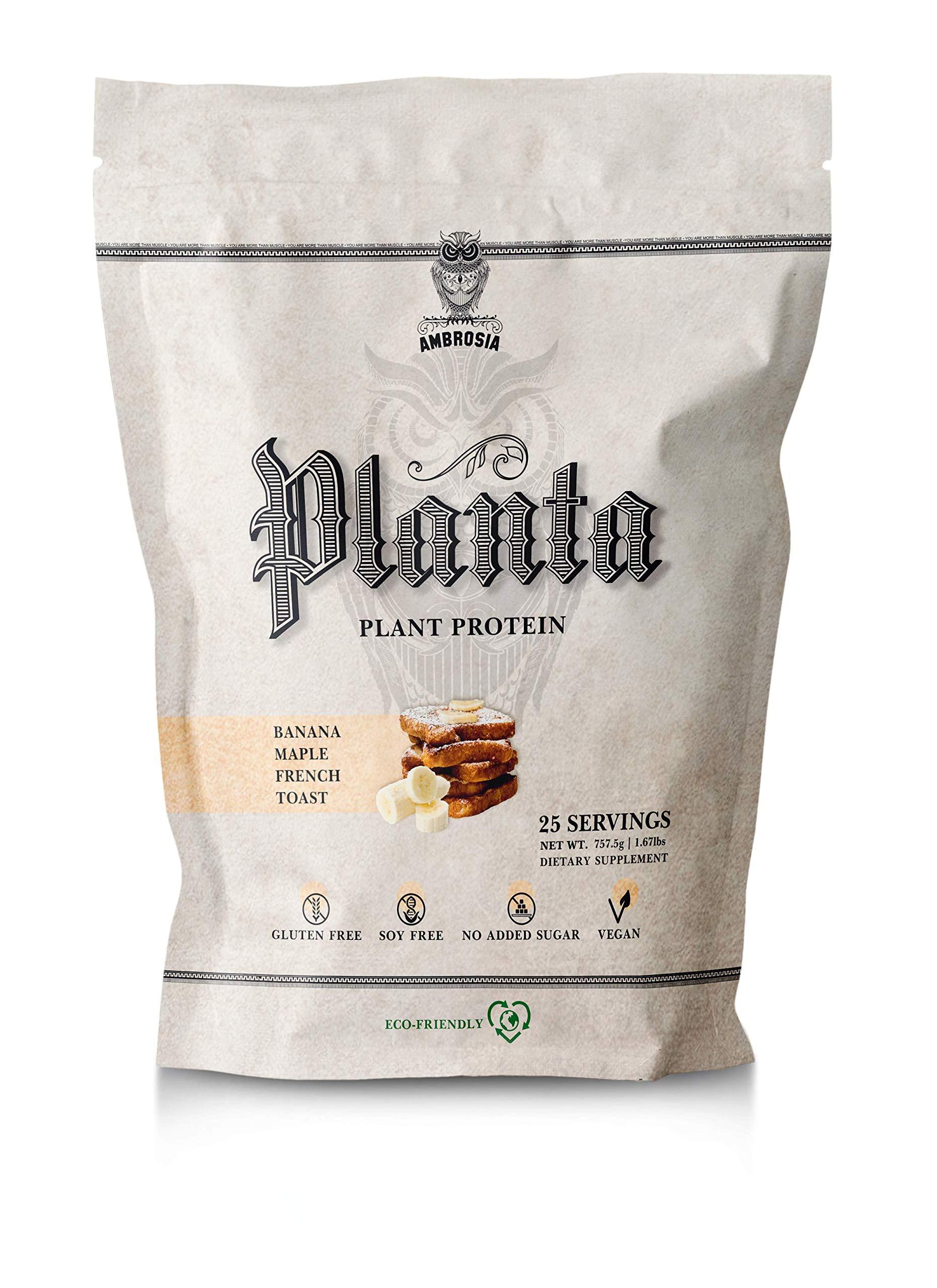 Ambrosia Planta | Organic Plant-Based Protein | 25 Servings (Banana Maple)