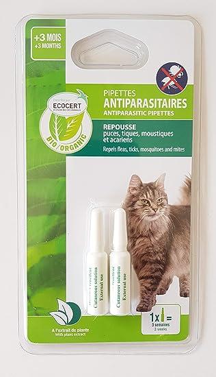 VITALVETO agrobiothers pipeta biológica controlada Pest Control 2 x 0,6ml Cat - edencert: Amazon.es: Productos para mascotas