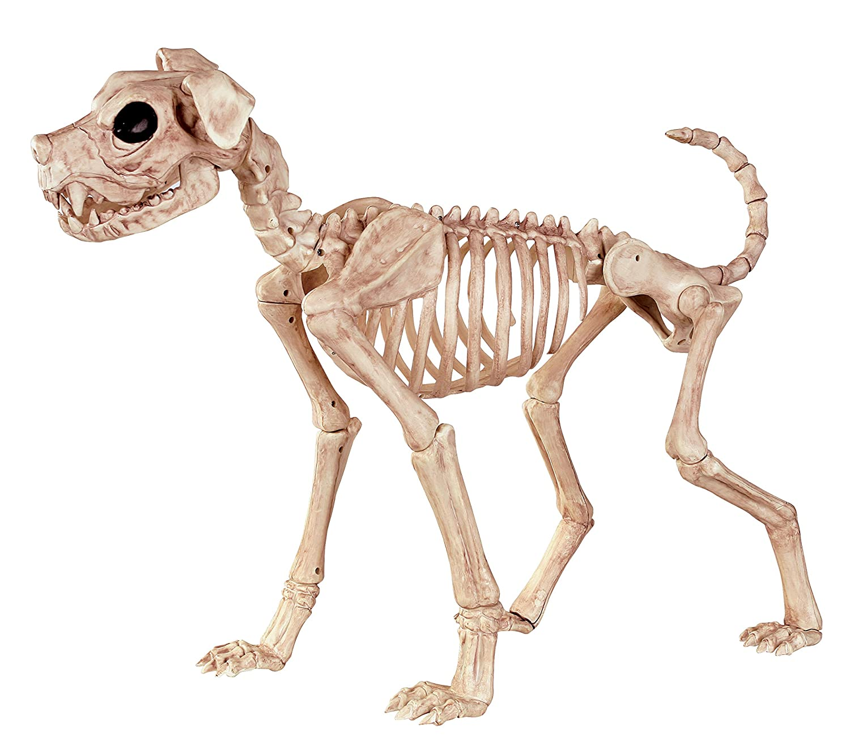 halloween dog skeleton