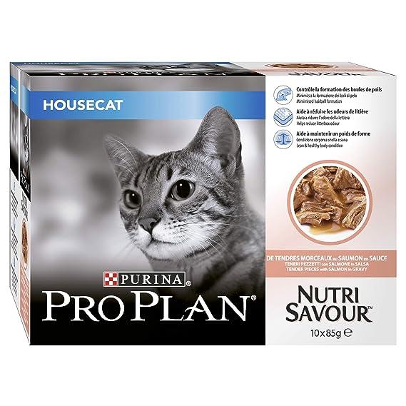 PET-134268 Pro Plan Cat House Salmón 10Pack (85g): Amazon.es ...