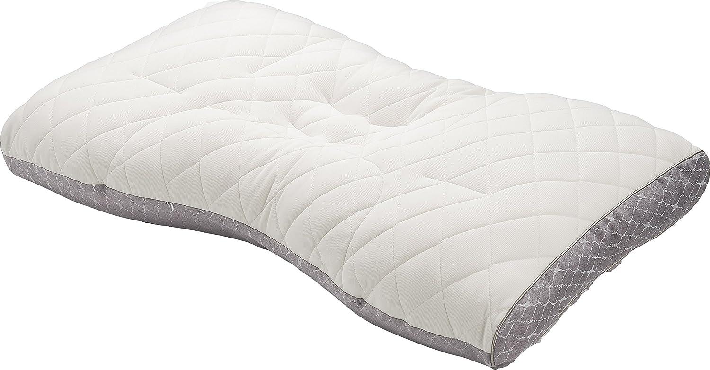 東京西川 フラボノイド パイプ枕 70×43cm ファインスムーズ FA6010 日本製 (低(L)) B01B5RNN8C  低(L)