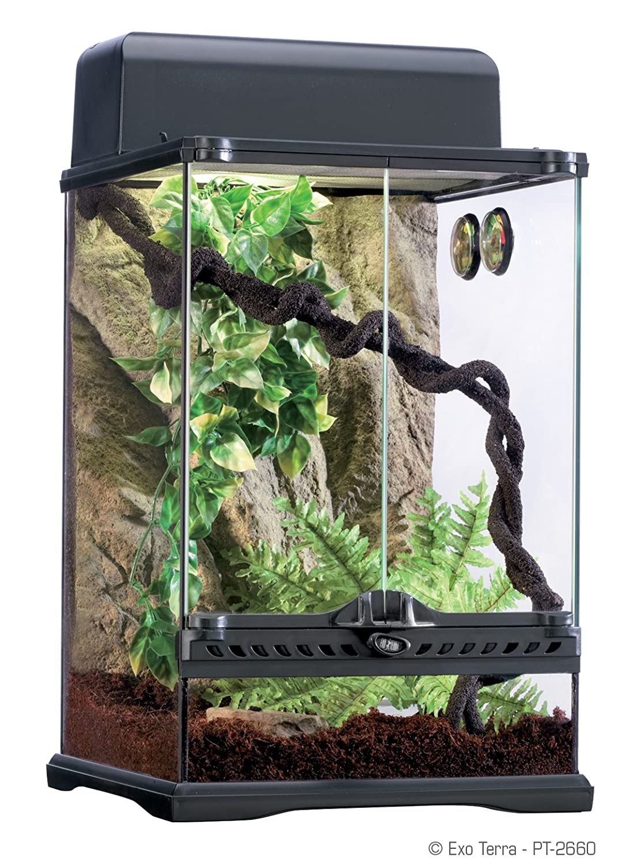 Amazon Com Exo Terra Rainforest Habitat Kit Includes Pt2602