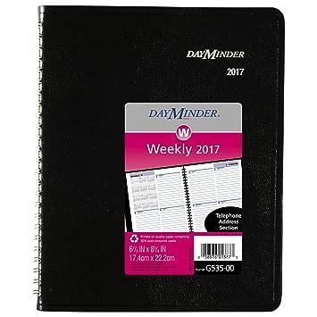 Amazon.com: dayminder planificador semanal/Nombramiento Book ...
