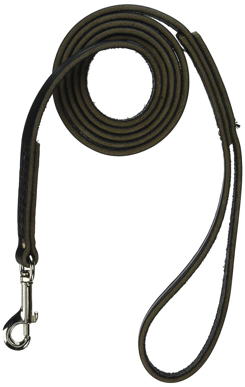 Black X-Small Black X-Small Leather Bredhers 6 x 1 2-Feet Latigo Dog Lead, X-Small, Black