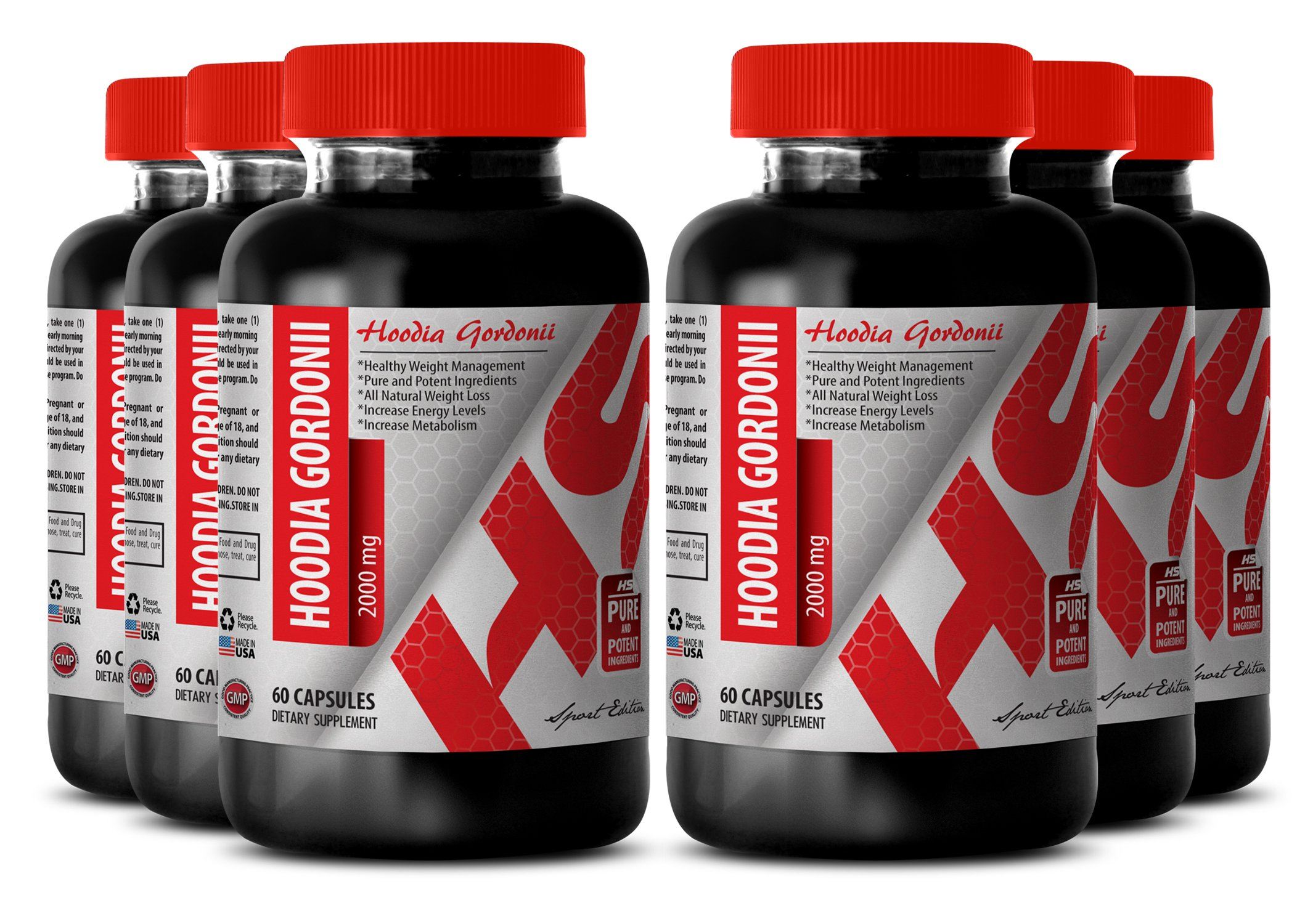 Hoodia appetite - HOODIA GORDONII POWDER 2000 MG - support digestion (6 Bottles) by Healthy Supplements LLC