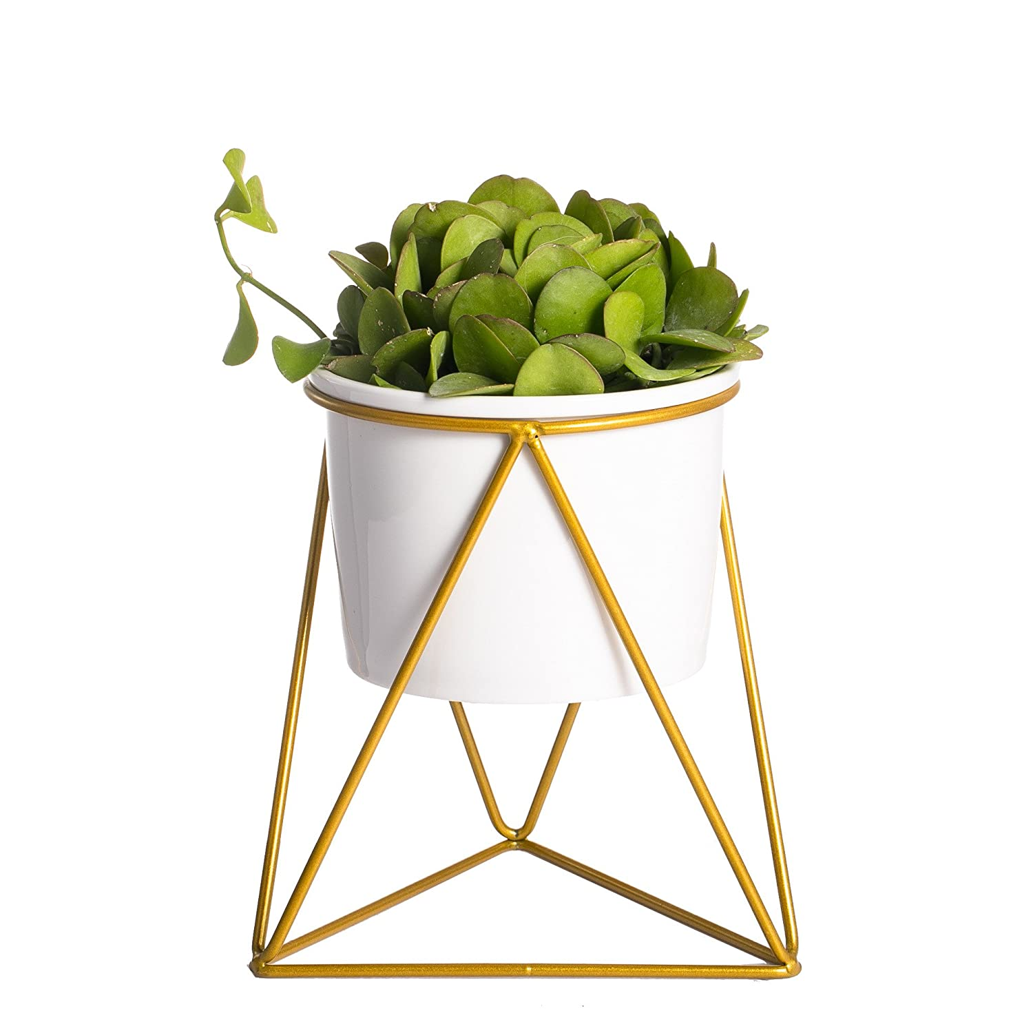 NCYP Geometric Iron Rack Holder Metal Stand Gold with White Ceramic Planter Indoor Desktop Garden Pot for Succulents Herbs Cactus Plants Modern Style Window Sill Decorative Bonsai