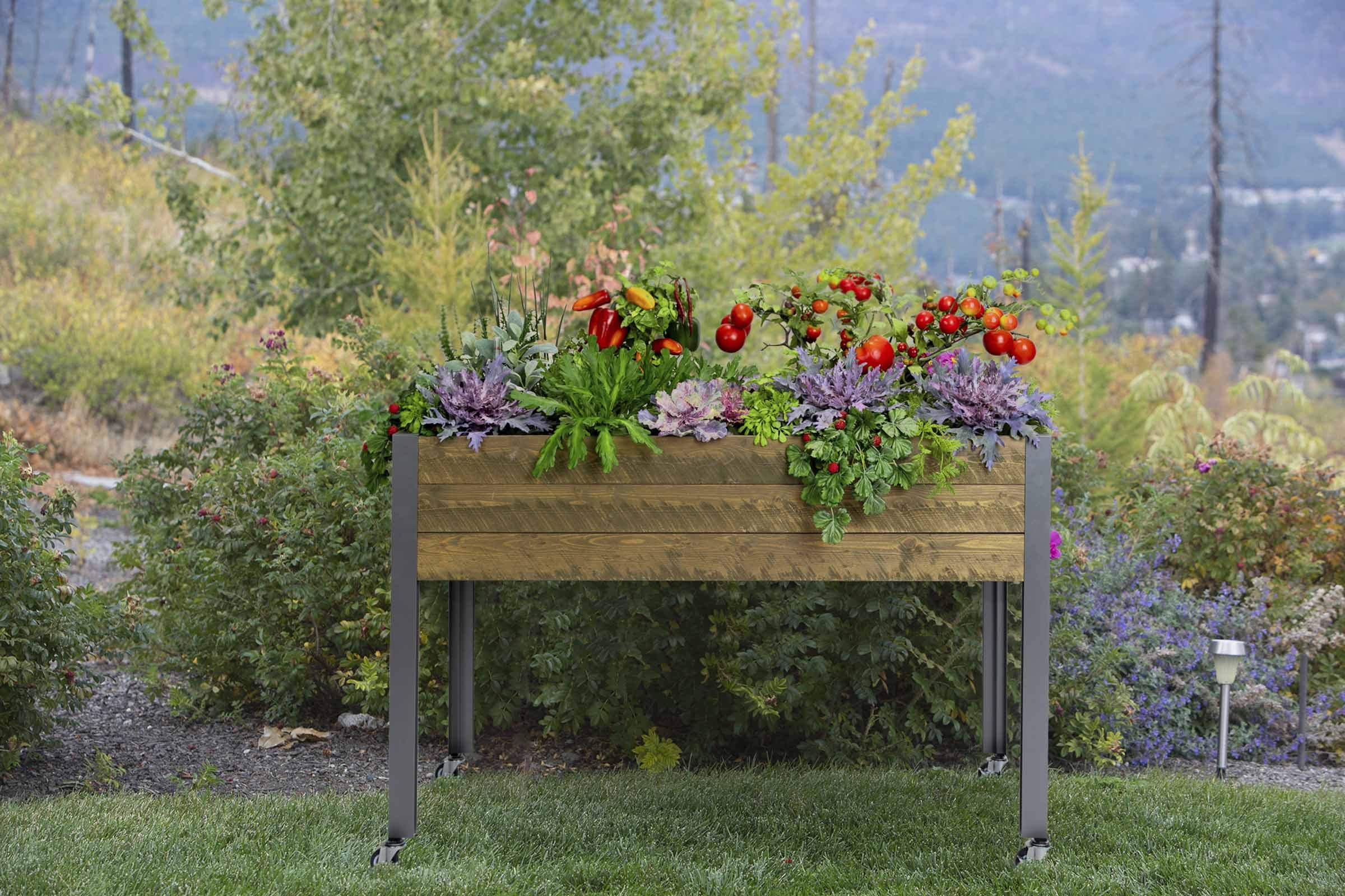 CedarCraft Self-Watering Elevated Spruce Planter (21'' x 47'' x 32''H) - The Flexibility of Container Gardening + The Convenience of a self-Watering System. Grow Healthier, More Productive Plants. by CedarCraft (Image #7)