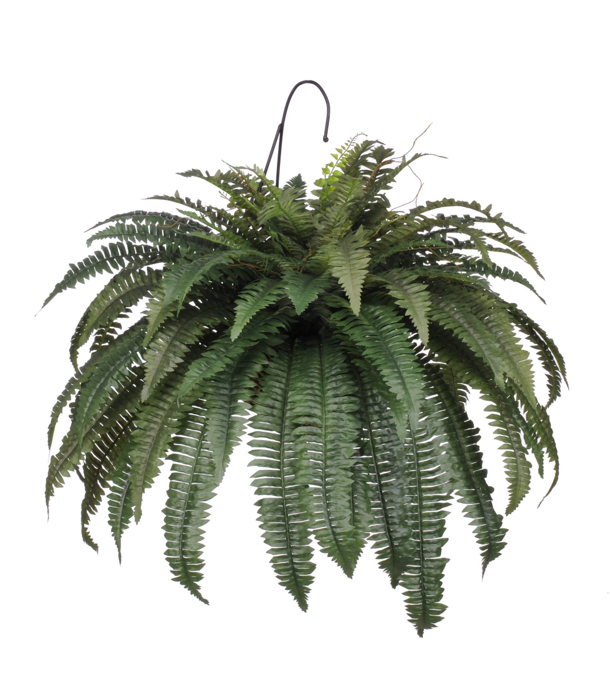 House-of-Silk-Flowers-Artificial-Fern-Hanging-Basket