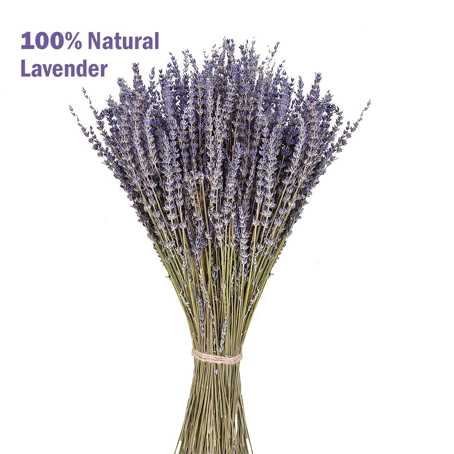 June Fox Dried Lavender Flowers 100% Natural