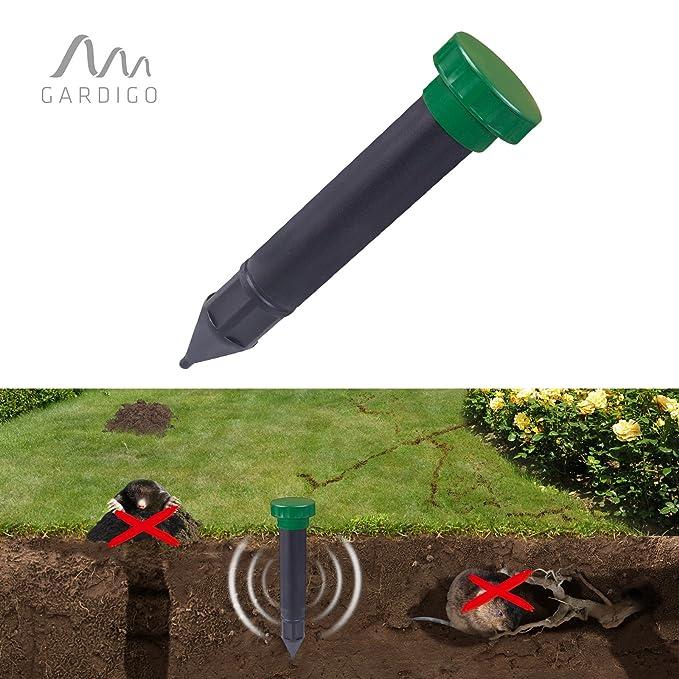 Ahuyentador sónico de topos para jardín: Amazon.es: Jardín