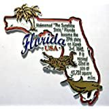 Florida the Sunshine State Outline Montage Fridge Magnet