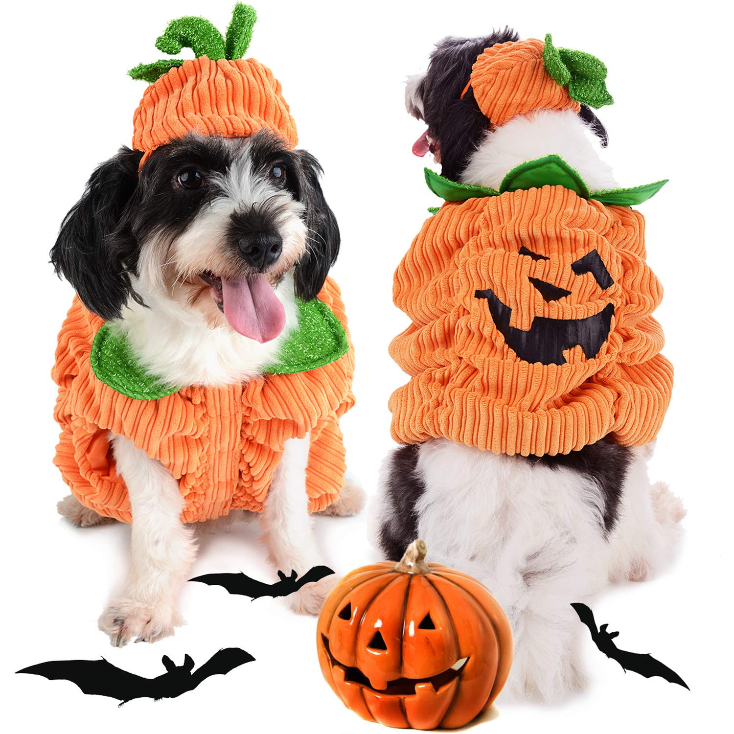 Legendog Dog Halloween Costume,Dog Halloween Costume with Pumpkin Hat Design Creative Funny Halloween Dog Outfits for Small Medium Dog