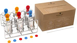 Ecozoi Eco-Safe Stainless Steel Popsicle Molds and Rack - 6 Ice Pop Makers + 6 Reusable Stainless Steel Sticks + 12 Silicone Seals + 1 Rack + 1 Cleaning Brush