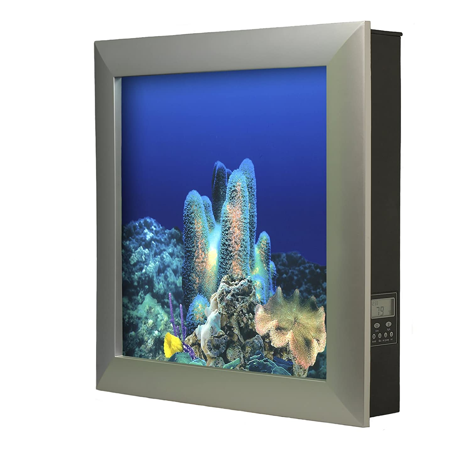 Wall Mounted Aquariums Design Decoration