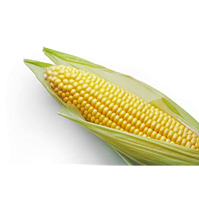 """Incredible"" RM Sweet Yellow Corn Hybrid, 75+ Premium Heirloom Seeds, Sweet Incredible Flavor! Fantastic addition to your home garden! (Isla's Garden Seeds), 90% Germination Rates, Highest Quality Seeds : Garden & Outdoor"