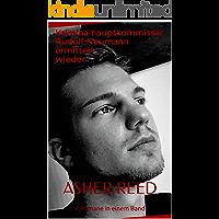 Kriminalhauptkommissar Rudolf Neumann ermittelt: 2 Romane in einem Band (German Edition) book cover