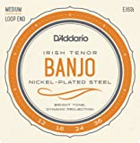 D'Addario EJ63i 12 - 36 Nickel Irish Tenor Banjo String