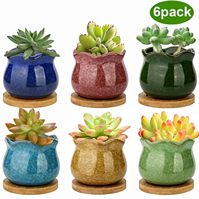 Succulent Pots, ZOUTOG 3.9 inch Ceramic Ice Crack Flower Planters, Colorful Plant Pot with Bamboo Trays, Pack of 6 (Plants Not Included): Garden & Outdoor