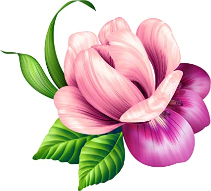 Amazon.com Beautiful Tropical Realistic Purple Pink Flower