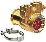 Procon 112A035F11CA Brass Rotary Vane