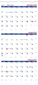 Brownline 2021 3-Month Wall Calendar, 3 Months on Each Sheet, 12.25 x 27 inches (C171128-21)