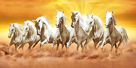 Hd Wallpaper Of 7 White Horses The Best Hd Wallpaper