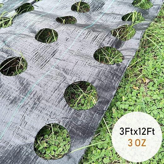 Moonvvin Jardín Hierbas Barrera Tela Planta Hierbas Bloque Elevado ...