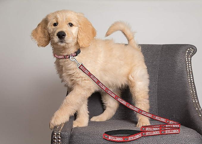 Amazon.com: Accesorios para mascotas de primera clase ...