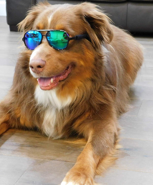 G010 Dog pets Aviator Turbo Sunglasses glasses goggles w retainer strap Medium breeds 20-60lbs