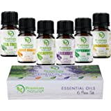 Aromatherapy Essential Oils Gift Set - Pure Natural Essential Oil for Diffusers Humidifiers & Carrier Oils Tea Tree Orange Eucalyptus Lavender Peppermint & Lemongrass 10 ml each Therapeutic Grade