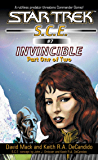 Star Trek: Invincible Book One (Star Trek: Starfleet Corps of Engineers 7) (English Edition)