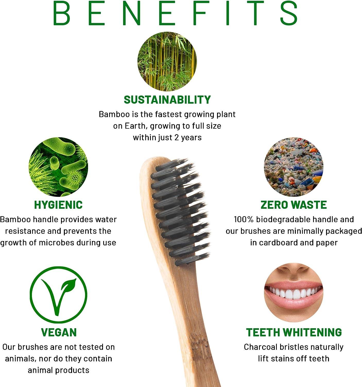Cepillo de dientes de bambú, respetuoso con el medio ambiente ...