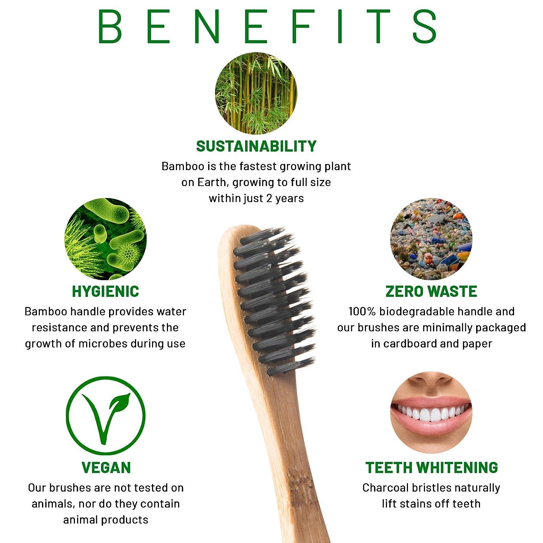 Cepillo de dientes de bambú, respetuoso con el medio ambiente, biodegradable, sin BPA, embalaje de plástico cero, cerdas de carbón vegetal mediano, ...