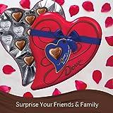 DOVE Valentine's Milk Chocolate Truffles Candy